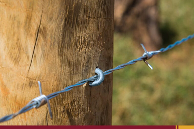 BLOGImprimirFonte +Descubra como você pode lucrar mais com os acessórios para construção rural!