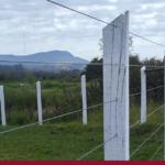 Você sabe qual é a altura de cerca para gado ideal?